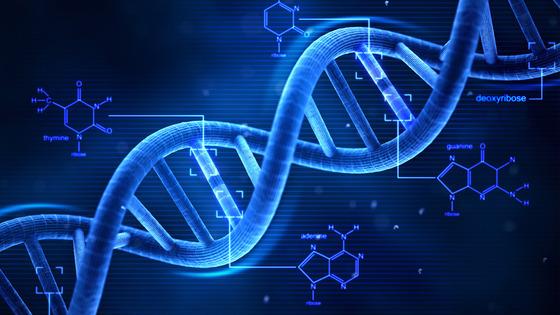 Nova pesquisa diferencia cinco tipos de câncer de próstata