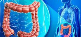 Veja as novas recomendações sobre câncer colorretal!